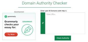 Small SEO Tools Domain Authority Checker